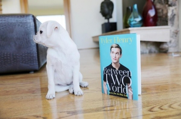 6 Awesome Celeb Books to Look Forward to